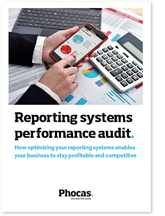 reporting-systems-performance-audit.png