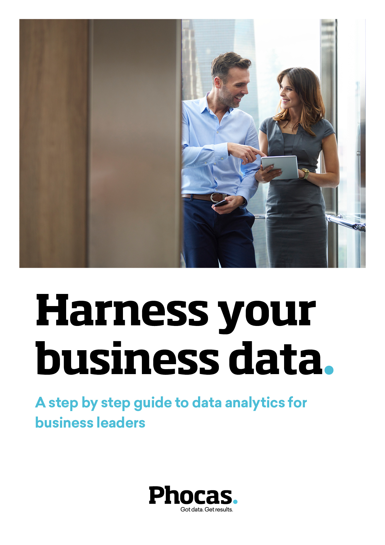 Harness your business data - Executives v1-1