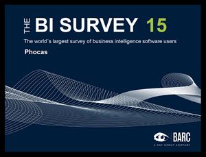 bisurvey-15